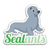 sealants_seal