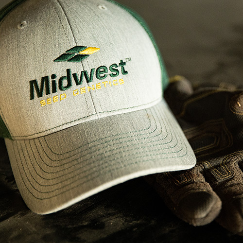Midwest Seed Genetics