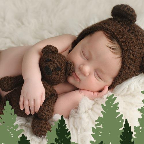 Teddy Bear Den